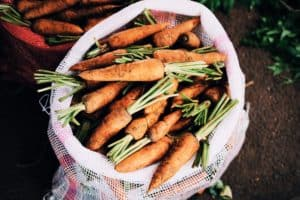 Heal your Gut with the bio-individuality diet
